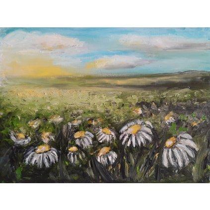 Kwiaty Polne – sprzedam obrazy olejne